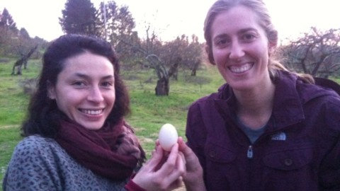First Duck Egg!